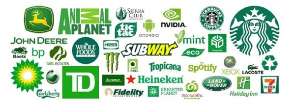 Green colors branding