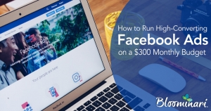 How to Run High-Converting Facebook Ads on a $300 Monthly Budget